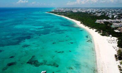 playa México ambiente