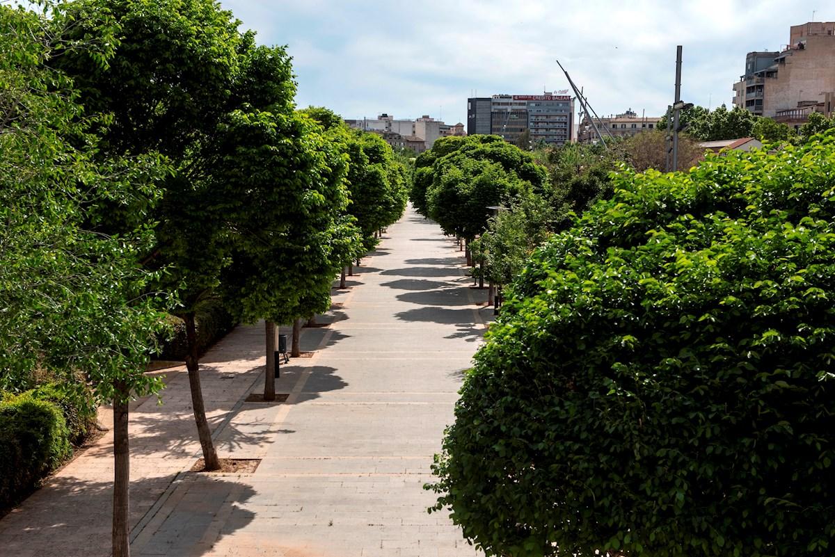 parque ambiente
